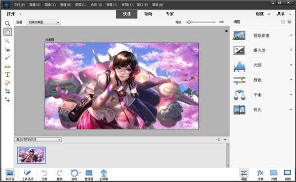 photoshop elements 2022破解版