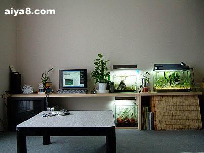 鱼缸在家居中的摆设(三)