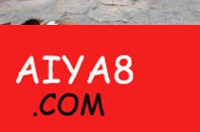 """猴宝宝和它的狗""""爸爸"""""""
