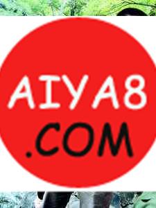 新闻:上海巨鳖昨放生西园寺