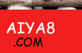 大熊猫属于猛兽 游客不能贸然接近
