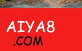 摄影师捕捉到鳄鱼被河马愤怒围杀瞬间