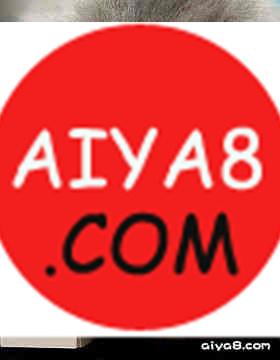 弹钢琴的猫