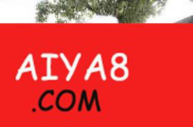 大象扮熊猫