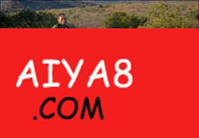 南非男子骑2吨重犀牛散步