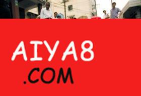 上海白莲泾捕获罕见白色甲鱼