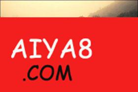 黎明的乌龟