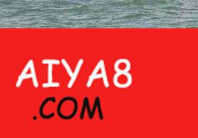 """成年海豚驮死亡幼子""""回家"""""""